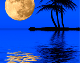 caribbean catamaran charters during full moon